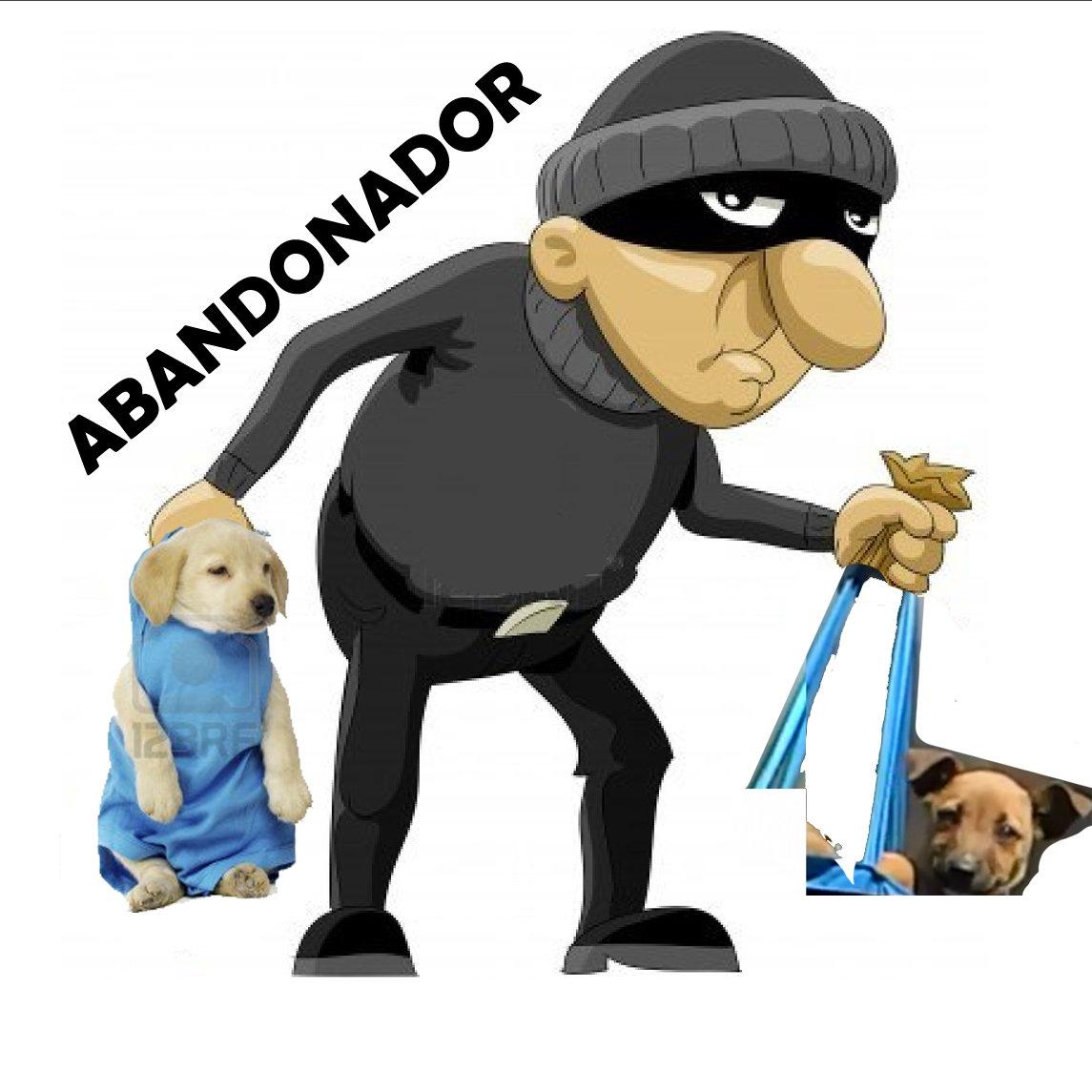 12 tipos de abandonadores de perros.