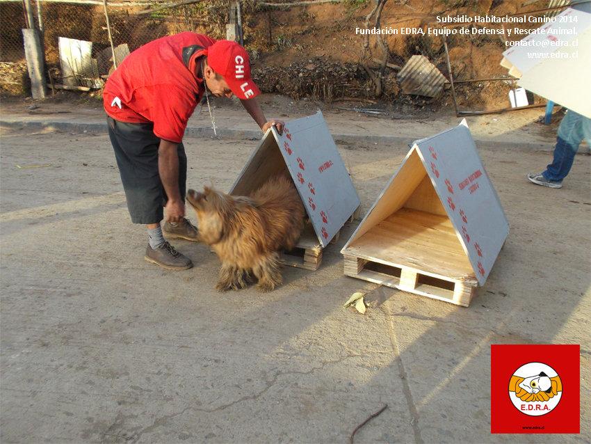 Subsidio Habitacional Canino Valparaiso 2