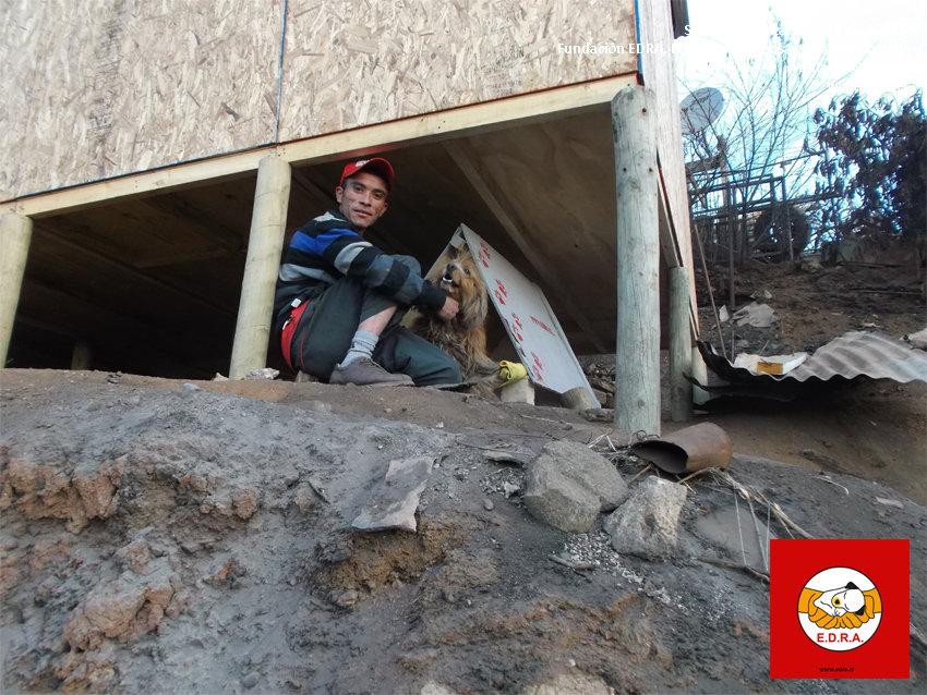 Subsidio Habitacional Canino Valparaiso 5