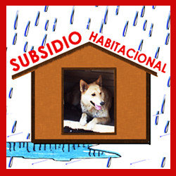 Subsdio Habitacional Canino