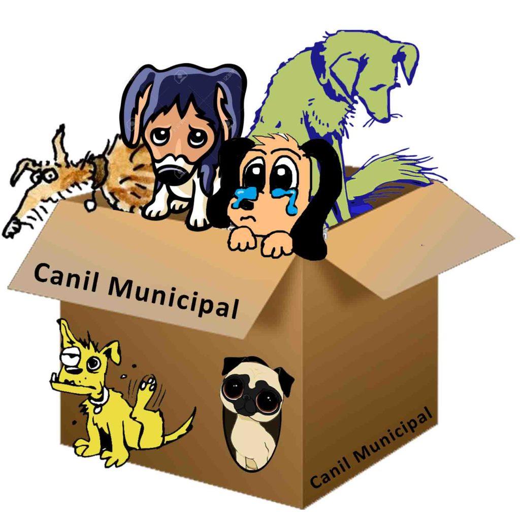 logo-canil-municipal